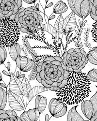Alannah Black Botanical Wallpaper by
