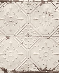 Donahue Off-White Tin Ceiling Wallpaper by