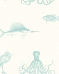 Oceania Aqua Sea Creature Wallpaper by