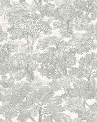 Spinney Grey Toile Wallpaper by