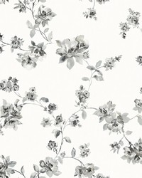 Cyrus Black Floral Wallpaper by