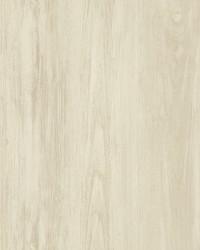 Mapleton Beige Wood Wallpaper by