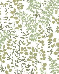 Dixon Green Forest Leaves by  Brewster Wallcovering