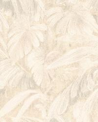 Raven Beige Palm Tree Leaf Texture by  Brewster Wallcovering