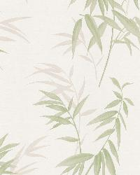Oates Green Bamboo Leaf Texture by  Brewster Wallcovering