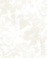 Eccentricity White Damask by