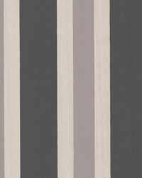 Orbit Charcoal Stripes by