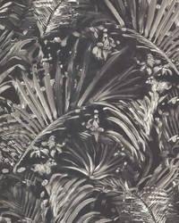 Adopsis Grey Botanical by