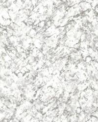 Tektite White Texture by