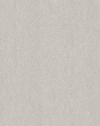 Matter Light Grey Texture by