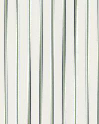 Harry  Green Pinstripe by