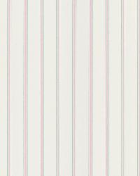 Harry  Pink Pinstripe by