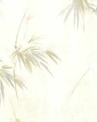 Edulis Cream Bamboo Texture by