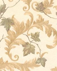 Alessia Beige Scrolling Leaf by  Brewster Wallcovering