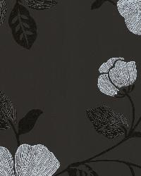 Maddison Black French Floral by
