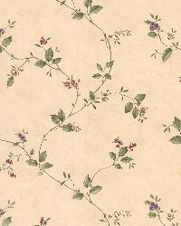 Olivia Beige Floral Trail by  Brewster Wallcovering