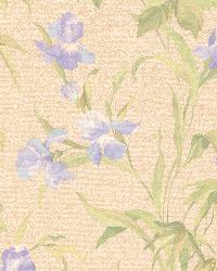 Iris Lavender Iris Floral by