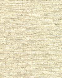 Bark Cream Texture by
