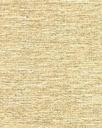 Bark Beige Texture by