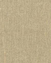 Wasp Beige Texture by