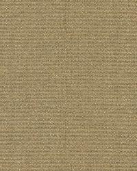 Poplin Light Brown Woven Texture by