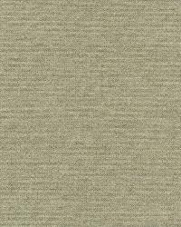 Poplin Neutral Woven Texture by
