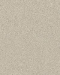 Sand Beige Subtle Texture by