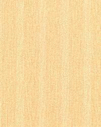Miram Beige Stripe Texture by  Brewster Wallcovering