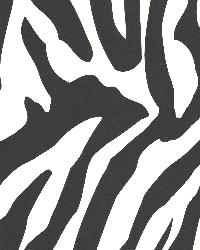Zebbie White Zebra Print by