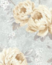 Pandora Slate Peony Trail by  Brewster Wallcovering