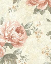 Pandora Peach Peony Trail by  Brewster Wallcovering