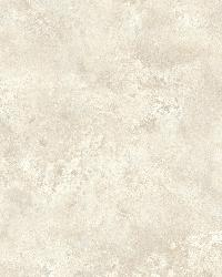 January Taupe Distressed Texture by