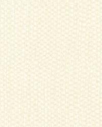 Smyth Cream Texture by