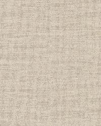 Carroll Beige Canvas Texture by