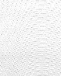 Swirl Undulating Texture Paintable by