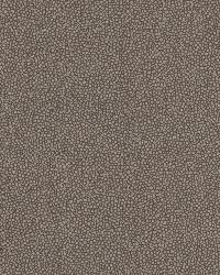Spore Espresso Bubble Texture by