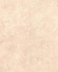 Loris Peach Blotch Texture by
