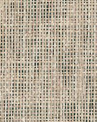 Kyou Taupe Grasscloth by