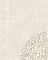 Malabar Cream Leaf by