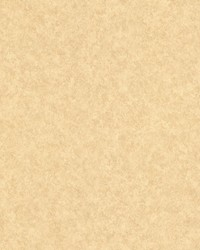 Jonas Beige Pearl Raindrop Texture by  Brewster Wallcovering
