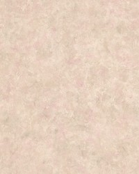 Hirum Taupe Satin Plaster by  Brewster Wallcovering