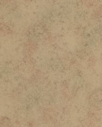 Cecil Brass Texture by  Brewster Wallcovering