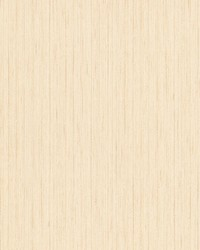 Hayes Champagne Stria Stripe by  Brewster Wallcovering