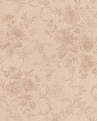 Highbury Champagne Floral Scroll by