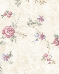 Mary Pink Floral Vine by  Brewster Wallcovering