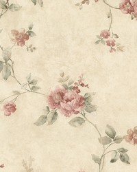 Mary Salmon Floral Vine by  Brewster Wallcovering