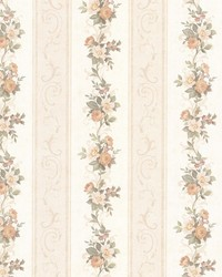 Lorelai Peach Floral Stripe by  Brewster Wallcovering