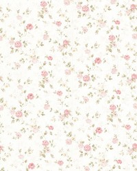Alex Pink Delicate Satin Floral Trail by  Brewster Wallcovering