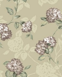 Voluta Grey Acanthus Scroll by