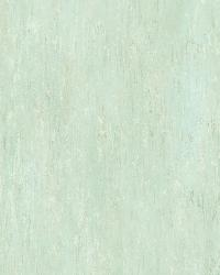 White Renaissance Texture by